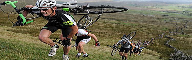 Cyclo Cross / Gravel